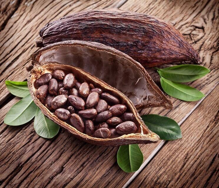 Kakaovník pravý (Theobroma cacao)